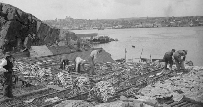 An old photo of some fishermen and salted cod