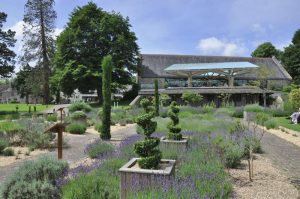 Lavender Garden with the Grange Restaurant behind at Buckfast Abbey