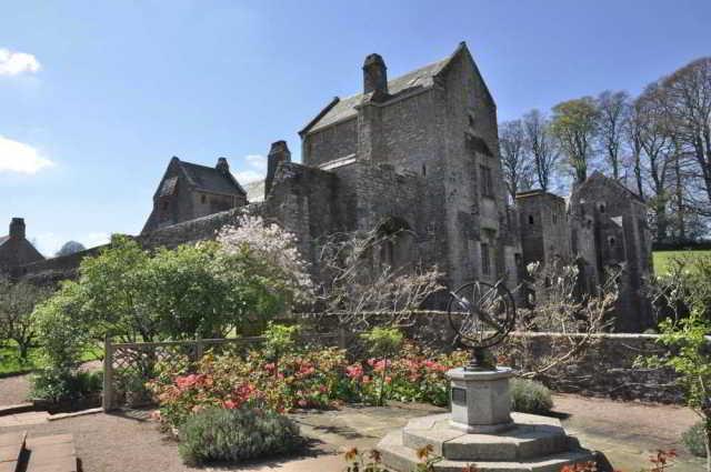 Compton Castle Rose Garden